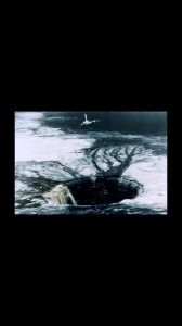 image4-168x300