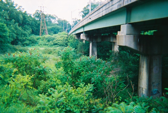 bridge-side
