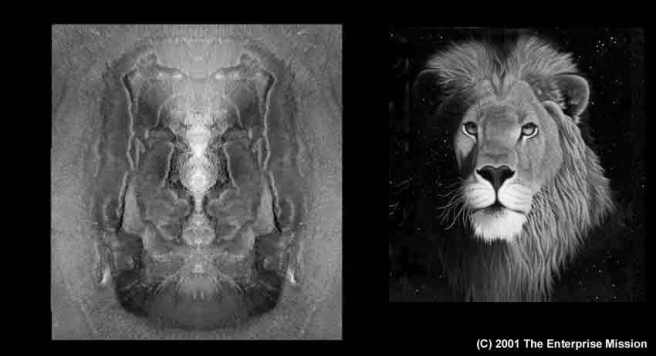 2001-LionComp2