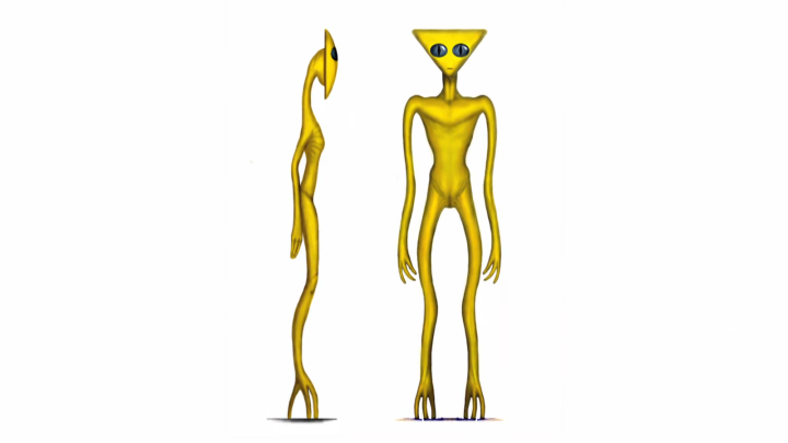 13_Golden_Triangle_Head