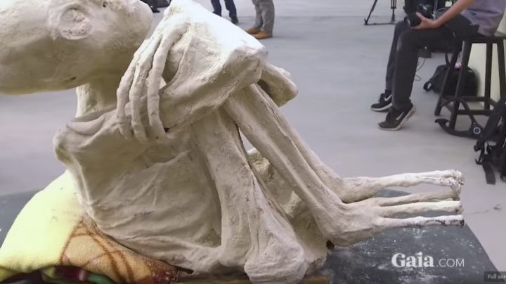 gaia_mummy