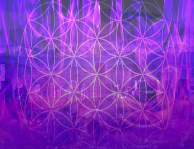 denverviolet