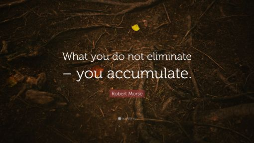 6321738-robert-morse-quote-what-you-do-not-eliminate-you-accumulate