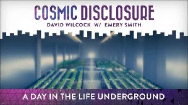 Revelación Cósmica: Un día en la vida bajotierra