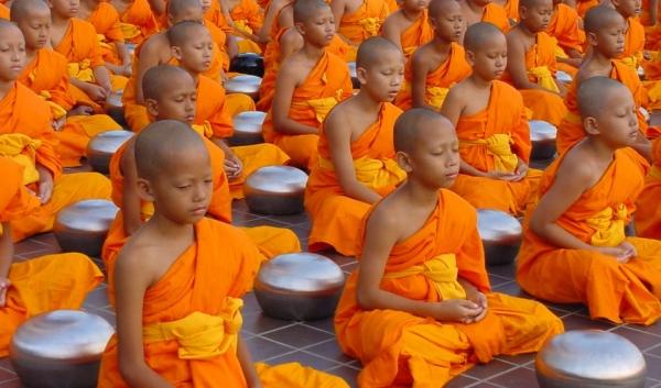Estudios muestran que la meditación grupal reduce el crimen, suicidios y muertes en las áreascircundantes