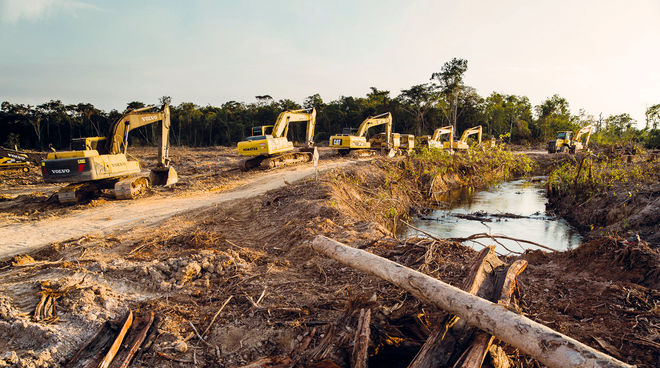 bulldozers_rainforest