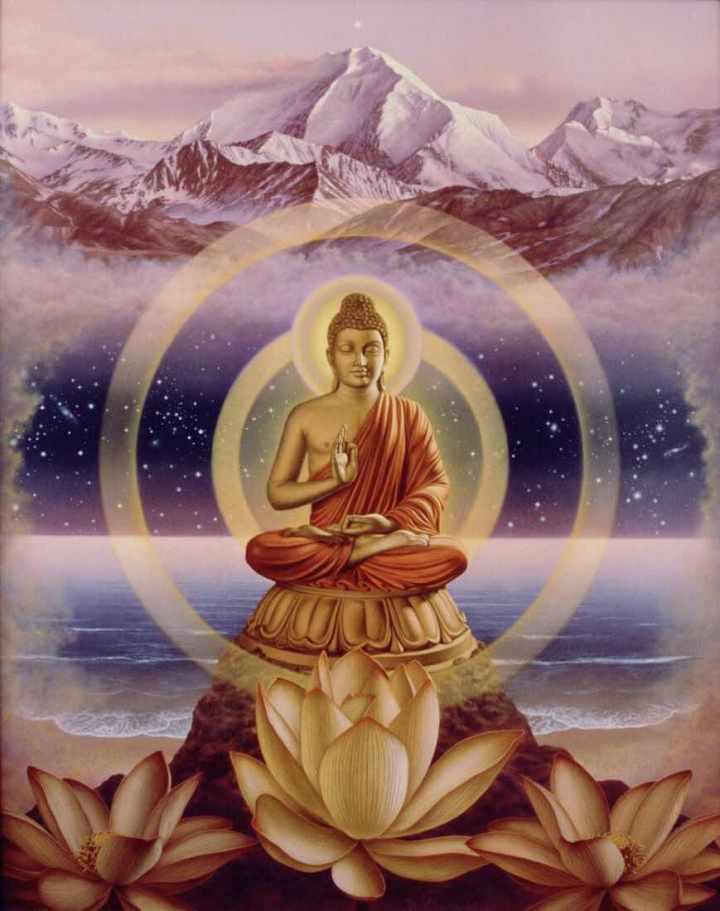 El testigo interno es la presencia del alma:Vipassana