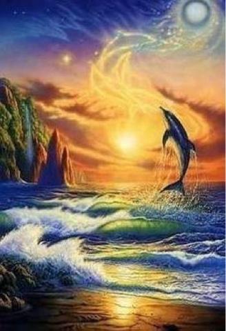 free_dolphin